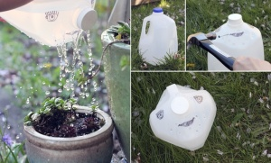 What To Do With Old Milk Jugs 18
