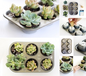 What To Do With Old Muffin Tins 6