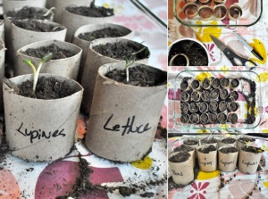 What To Do With Old Paper Roll Tubes 6