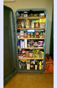 What To Do With An Old Refrigerator 5
