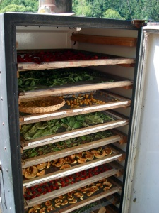 What To Do With An Old Refrigerator 6