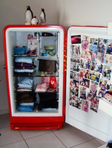 What To Do With An Old Refrigerator 8