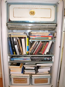 What To Do With An Old Refrigerator 9