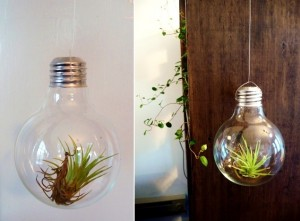 What To Do With Old Light Bulbs 6